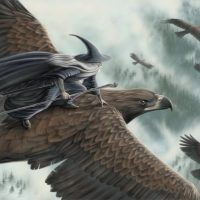 Lords of the Skies